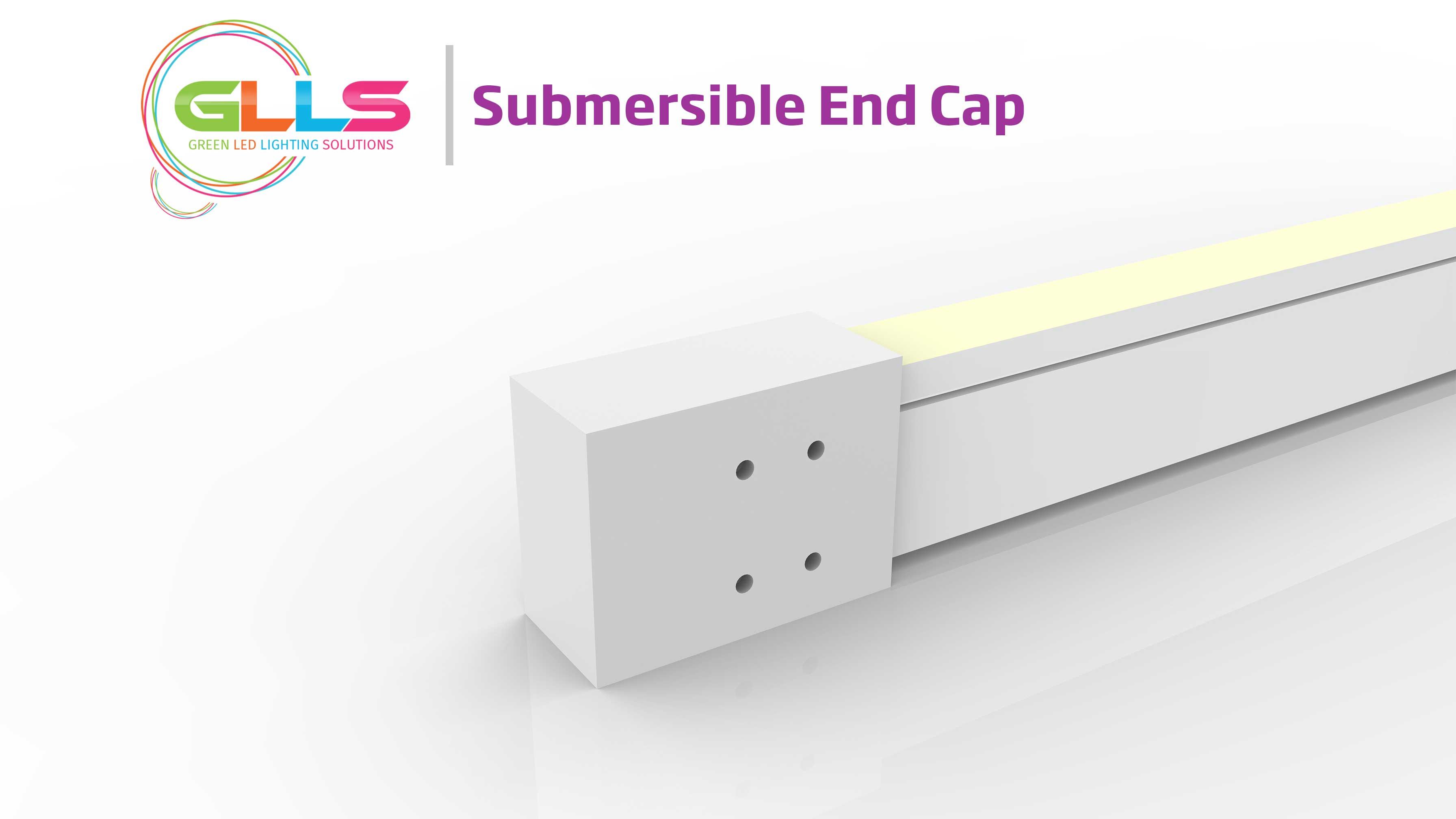 Vivid-S160-Submersible-End-Cap