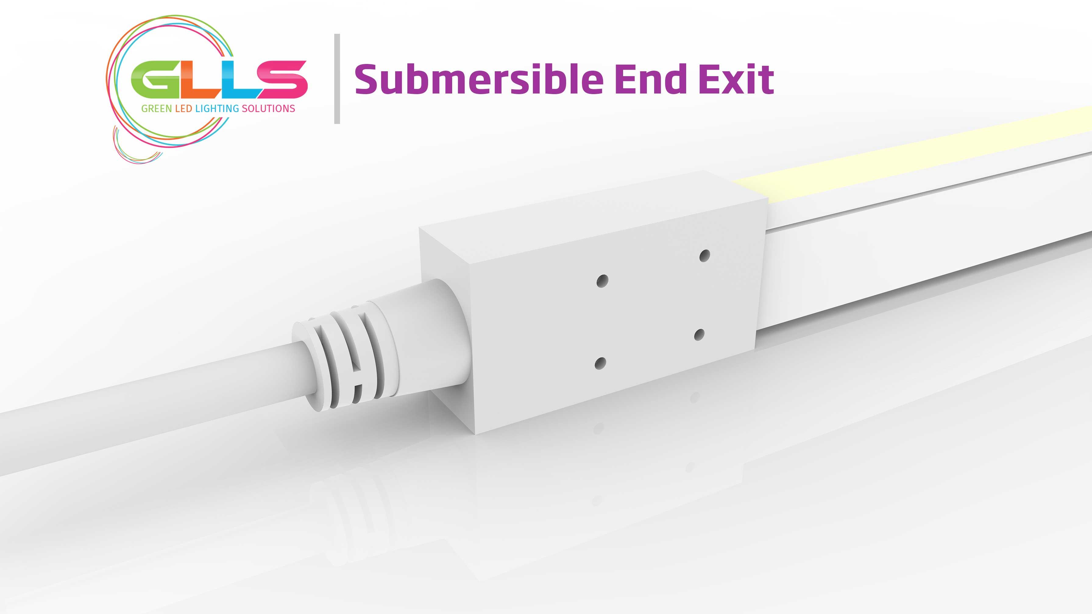 Vivid-S160-Submersible-End-Exit