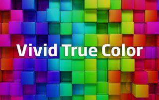 Vivid-True-color-Name